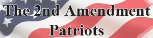 second amendment patriots logo